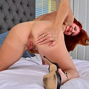 Red Fox with Andi James